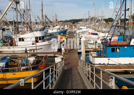 Fishing boats in port point pleasant new jersey usa for Fishing boats point pleasant nj