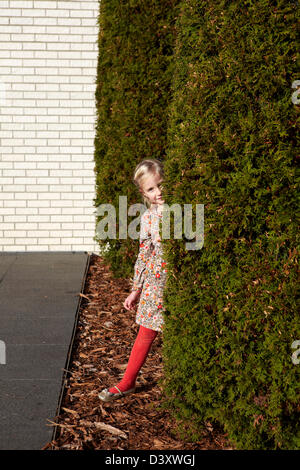 4 year old girl playing hide and seek - Stock Photo