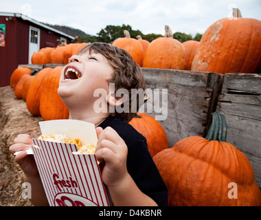 Boy eating popcorn in pumpkin patch - Stock Photo