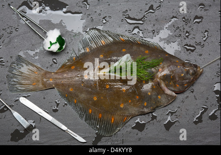 Fresh fish surgically stuffed with herbs - Stock Photo