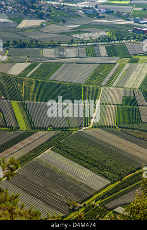 Aerial view of crop fields - Stock Photo