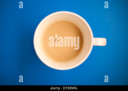 Fly in cup of tea. - Stock Photo