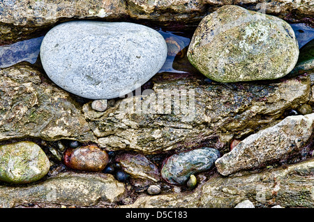 Stones on Beach - Stockfoto