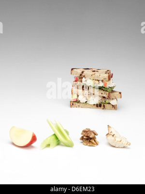 Chicken and apple sandwich - Stock Photo