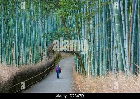 Tourist in the bamboo forest in Arashiyama, Kyoto, Japan - Stock Photo