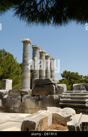 Mausoleum at Halicarnassus, one of the Seven Wonders of ...