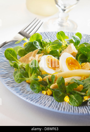 Mixed salad with white asparagus,tuna and eggs - Stock Photo