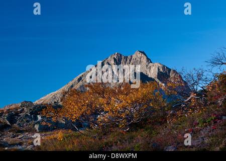 The mountain Blånebba, seen from Litlefjellet, in the Romsdalen valley, Rauma kommune, Møre og Romsdal fylke, Norway. - Stock Photo