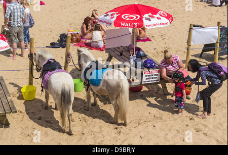 Two ponies on sandy beach available for pony rides, Bournemouth, Dorset, UK. Europe - Stockfoto
