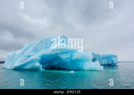 Glacial ice calved from the LeConte Glacier, Outside Petersburg, Southeast Alaska, USA - Stock Photo