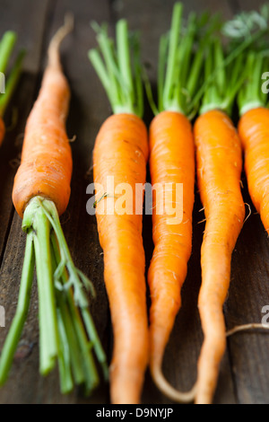 young carrots on wooden boards - Stock Photo
