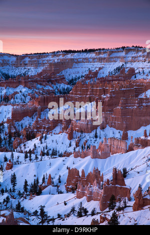 Hoodoos and Amphitheatre of Bryce Canyon, Utah, USA - Stock Photo