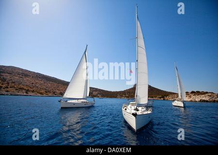 Sailing regatta - Stock Photo