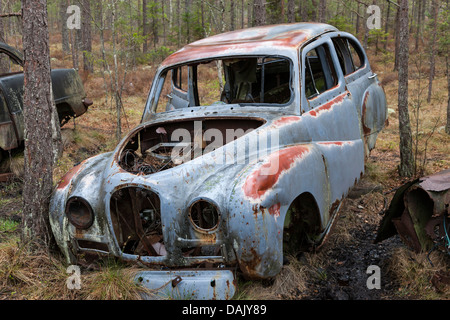 old discarded wrecked cars in greenland with army jeeps stock photo royalty free image. Black Bedroom Furniture Sets. Home Design Ideas