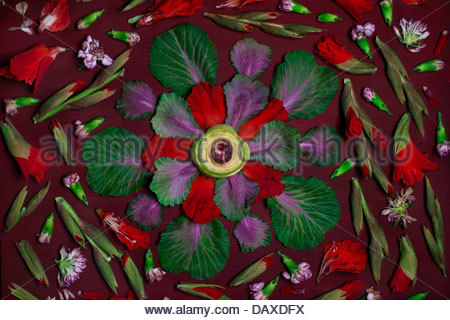 Overhead view of floral  arrangement of flowers and vegetables - Stock Photo