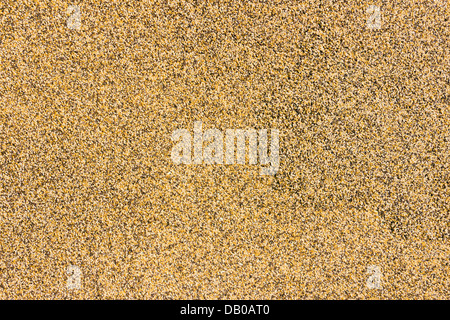 Multicolored Natural Marble Chip Plaster Close Up Background