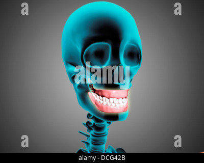 X-ray view of human skeleton showing teeth and gums. - Stock Photo