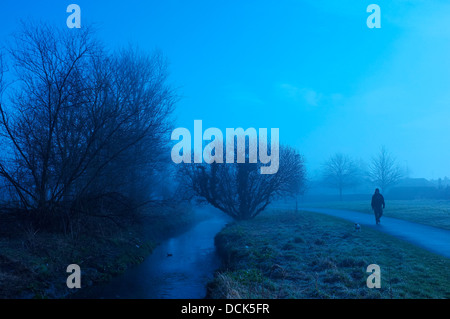 man walking dog in a park on a Misty morning - Stock Photo