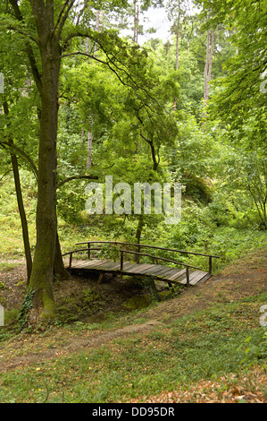 Small wooden bridge over a stream in a forest. - Stock Photo