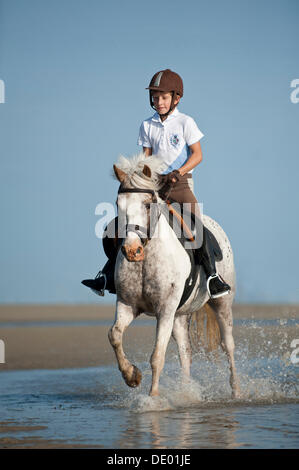 Girl on a pony trotting along the beach, St. Peter-Ording, Schleswig-Holstein - Stockfoto