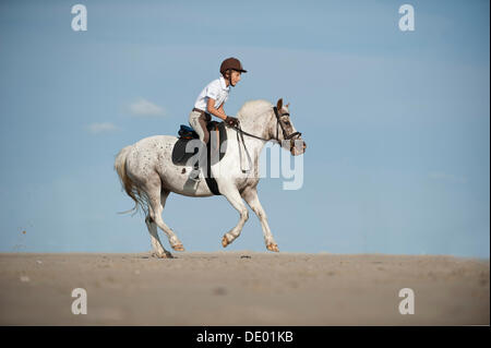 Girl riding a pony on the beach, St. Peter-Ording, Schleswig-Holstein - Stockfoto