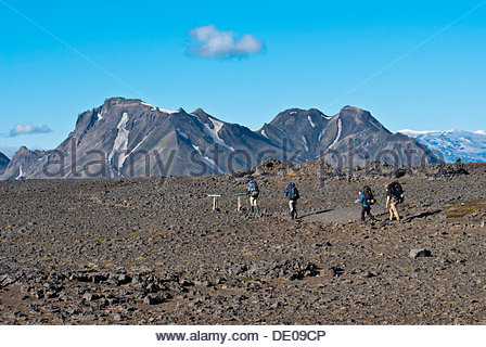 Hikers in a lava field, Laugavegur trekking trail, south of Hvanngil, Storkonufell mountains at back - Stock Photo
