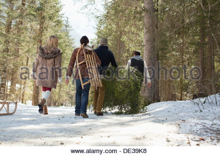 Friends carrying fresh cut Christmas tree in woods - Stock Photo