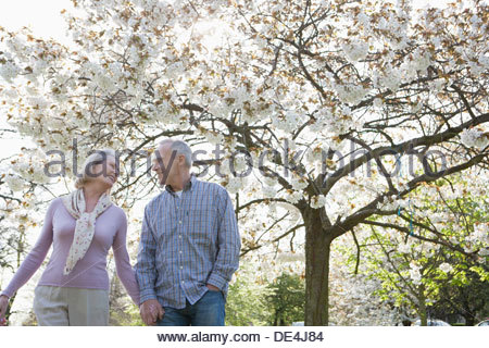 Senior couple holding hands under blooming tree - Stock Photo