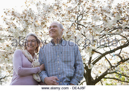 Senior couple hugging under blooming tree - Stock Photo