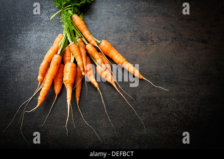 Bunch of fresh carrots on dark background - Stock Photo