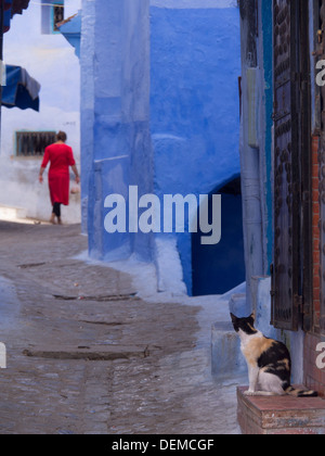 Cat watching woman in red walking away in a street of Chefchaouen, Morocco - Stock Photo
