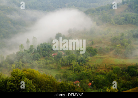 Foggy Summer landscape in Apuseni Mountains-Romania - Stock Photo