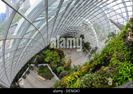 The cloud forest a large indoor greenhouse set in the for Indoor gardening singapore