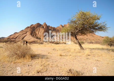 savannah landscape with granite rocks of the pontok