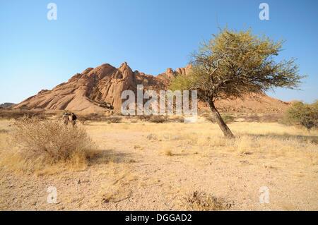 savannah landscape with granite rocks of the pontok