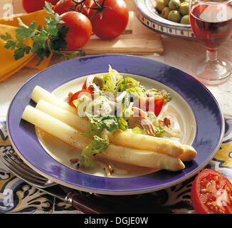 Spanish tuna salad with asparagus, Spain, recipe available for a fee - Stock Photo