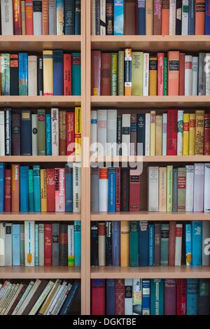 Full bookshelves - Stock Photo