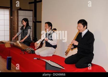 music, instrument, plucked string instruments, guitar ...