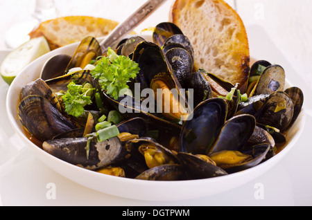 how to know when mussels are cooked