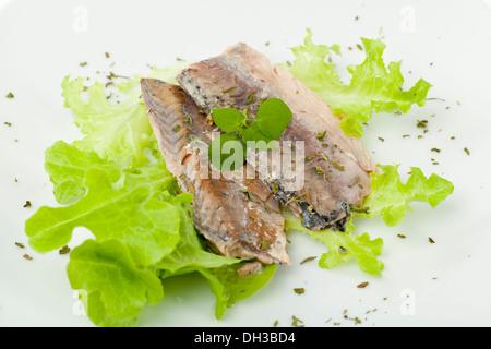 mackerel fillets on a white plate - Stock Photo