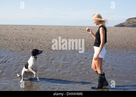 Woman holding ball for dog on beach, Wales, UK - Stock Photo