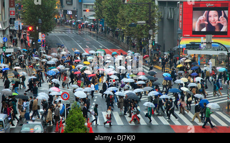 Japan, Tokyo, Shibuya, street crossing, crowd, people, - Stock Photo