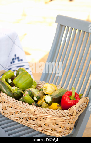 High angle view of variety of organic harvested vegetables in basket on blue patio chair - Stock Photo