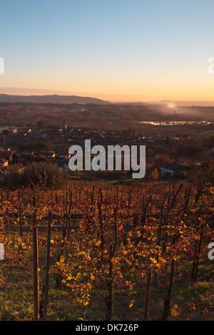 Sunset over Italian vineyard on autumn - Stockfoto