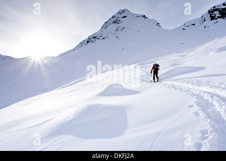 Ski tourer on the ascent to Mt Ellesspitze in Pflerschtal Valley, Wipptal Valley, South Tyrol, Trentino-Alto Adige, - Stock Photo