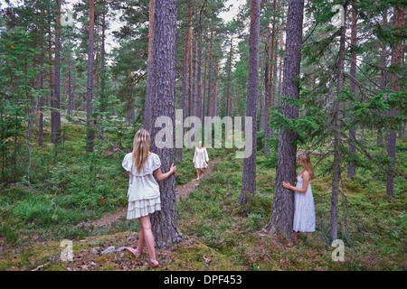 Teenage girls by tree trunks in forest - Stock Photo