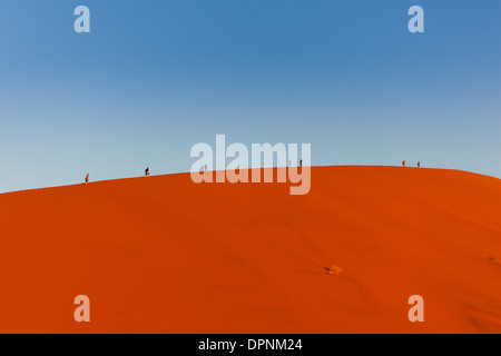 Tourists appear tiny as they hike along ridge of huge sand dune in Namib-Naukluft National Park, Namibia - Stockfoto