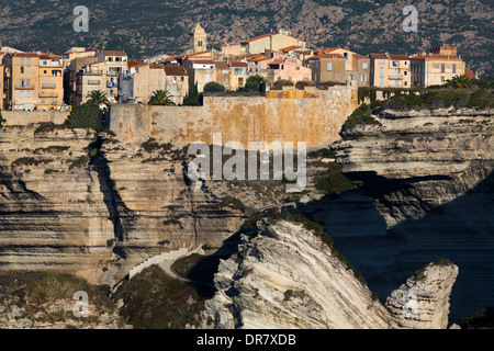 Chalk cliffs in the morning light, Bonifacio, Corse-du-Sud, Corsica, France - Stock Photo