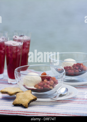 Maryland USA Fruit drink Fresh berries ice-cream biscuits - Stock Photo