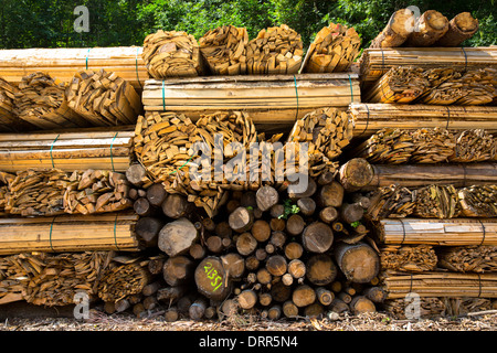 Timber planks and logs stacked to become seasoned wood at Interlaken in the Bernese Oberland, Switzerland - Stock Photo